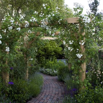 Solid English Oak Pergolas. Bespoke Oak frame Pergolas by Roger Platts. Hand-crafted. With roses and climbers in a Romantic Traditional English Garden.