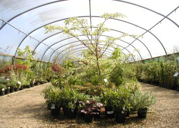 Garden Design and Nurseries. Open for retail of plants at the Nursery in Kent