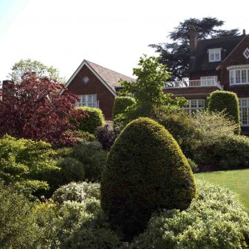 Landscape Design in Surrey. View our gallery of beautifully designed gardens