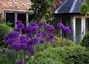 Landscaping in Kent, garden Designer Roger Platts' Traditional English Garden