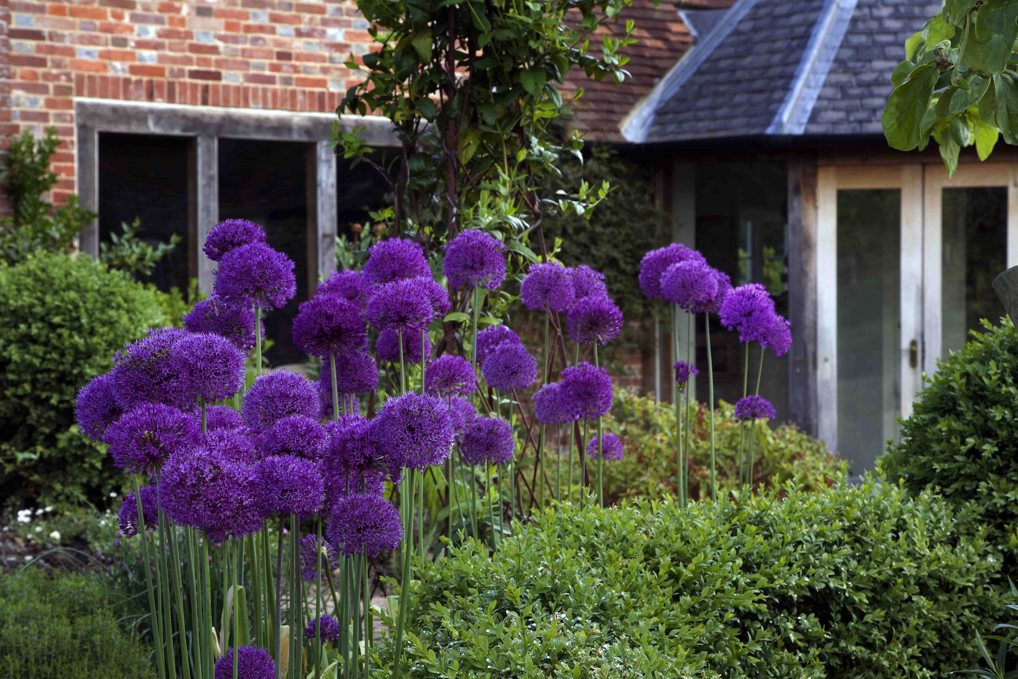 Landscaping in Kent, garden Designer Roger Platts' Traditional English Garden