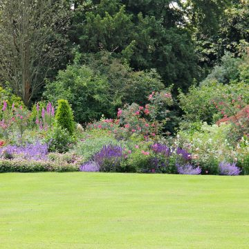 Long Border in Sussex Garden Designed by Kent based Garden Designer Roger Platts and his landscape team