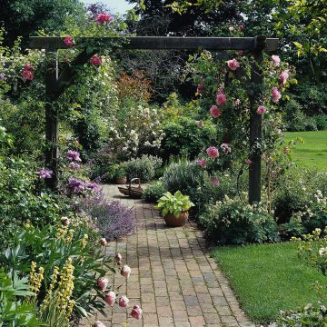 Beautiful English Garden with roses and pergola across a brick pathway. Cottage Garden Design