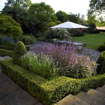Summer garden. Terrace planting, topiary, premium lawn, box hedging