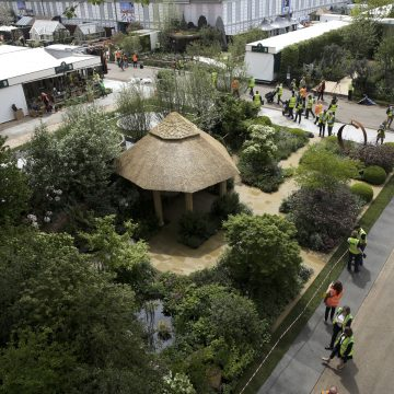 Footage of the Chelsea Flower Show. Roger Platts Garden Design and Nurseries Gold Medal winning garden